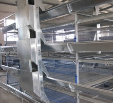 layer cage and broiler cage of new designed