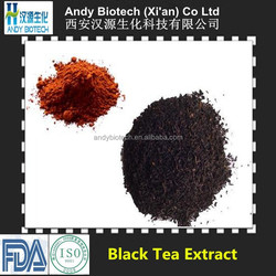 Golden Supplier Hot Selling Tea Polyphenols 40% Black Tea Extract
