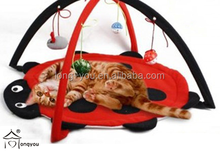cat playing pet tent with pet toys