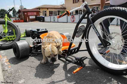 Baodiao Motor Drift Trike Top Quality Tricycle Off Road Motorized 3 Fat Wheel Motor Tricycle For Fun Manufacture Supply EEC EPA
