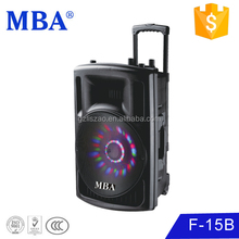 15 inch dj speaker subwoofer with lights,wireless mic,usb,sd,fm,radio