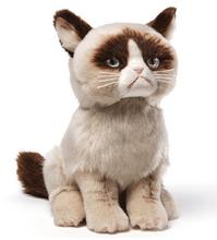 2015 Talking Grumpy Angry Expression Realistic Cute Cartoon Plush Cat