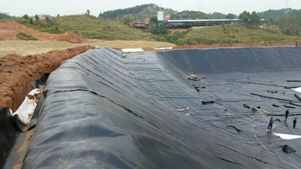 Wholesale Professional Hdpe Geomembrane Use In Fish Farm