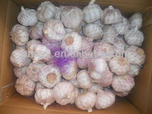 2015 newest natural white garlic
