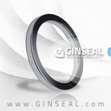 Api 6A Oval anillo de junta