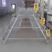 farm used fully automatic drinking and feeder farming chicken equipment