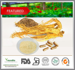 Panax Ginseng Root Extract/Panax Ginseng Extract/Ginsenosides