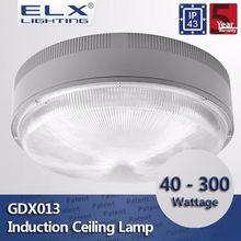 ELX Lighting induction corridors light sunny europe led ceiling light lm8017bj-621