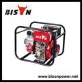 Bison BSDWP30E preço competitivo automático controlador da bomba de água