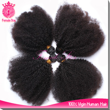 hot brazilian hair afro kinky bulk human hair weave, hairdressers products