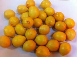 The mini yellow/green artificial foam fruit lemon,factory Direct
