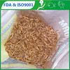 /product-gs/organic-fish-feed-mealworm-fish-feed-ingredients-60208455660.html