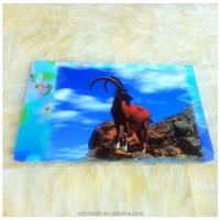 China manufactory produce cheap 3d pictures natural animation