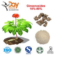 Radix Notoginseng Saponins Powder in Stock