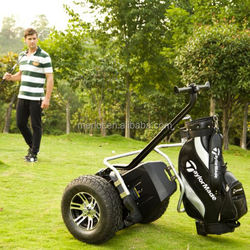 Environmental cheap self balance electric golf drop shipping with golf bag carrier