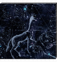 New sky constellation LED canvas art , fantastic lighted artwork printing wall art for home decoration