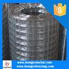 Galvanized Welded Wire Mesh Cheap/6x6 Concrete Reinforcing Welded Wire Mesh/Welded Rabbit Cage Wire Mesh