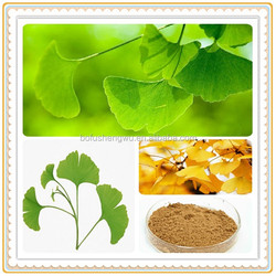ginkgo flavone glycosides terpene lactones/ginkgo biloba l/ginkgo biloba l.p.e.