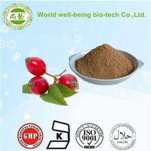 supply high purity rose hip powder extract 4:1 10:1