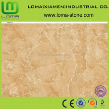Loma top quality ceramic tile,floor tiles 600*600