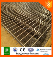 China supplier Competitive Price New Design 2X4 Decoration Double Wire Fence