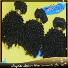 Fashion Popular Kinky Curl Wholesale Virgin Brazilian Remy Hair