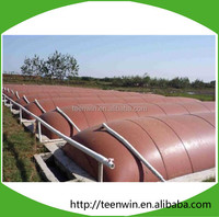 Teenwin biogas plant to generate electricity/biogas company