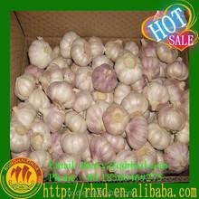 Black Garlic Nature Garlic Fresh Garlic