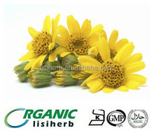 Natural Arnica Montana extract/Arnica extract Ratio 10:1 20:1 powder
