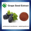 Pure Natural Grape Seed Extract,Grape Seed Extract Powder,Organic Grape Seed Extract