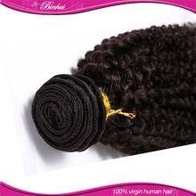 Brazilian Hair Soft And Charming Hair Extensions Free Sample Free Shipping