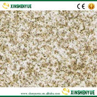 Hot Sale Polished Granite Sheet