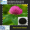 100% Pure Red Clover Powder Extract 8.0% Total Isoflavone