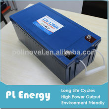 Lithium ion electric car battery 12v 120ah with smart BMS