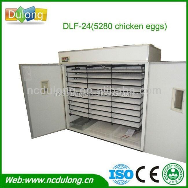 incubator machine chicken