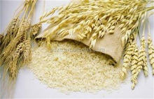Ukraine oats wholesale prices oat price for sale