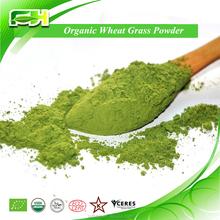 Health Drink Wheat Grass Powder with Best Price