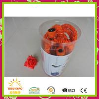 Pipe xppanding tool hosePlast Spring Hose PUW825B94H-AMZ 25-Foot 1/2-Inch Polyurethane Lead Safe Ultra-Light Recoil Garden Hose