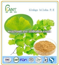 100% natural 24/6 ginkgo biloba leaf extract powder with EP6.0;USP30/32