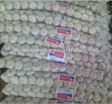 [Hot Sale] braid garlic for sale