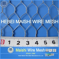 China chicken wire net 3/4 inches for fencing
