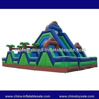 slide giant inflatable/jungle theme playground/slide mountain