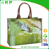 Multicolor series foldable 3d green apple 100% recycled shopping bag
