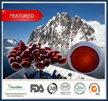High Quality Krill Oil / China wholesale krill oil capsules / wholesale krill oil