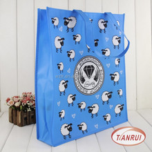 Recyclable popular image PP laminated non-woven fabric ppromotion shopping bag