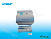Hepatitis B Surface Antibody Test Strip/Cassette HBsAb Test