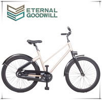 28 inch lady aluminum bike with auto 2 speed used for family EB5012