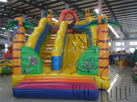 slides inflatable popular, professional inflatable water slide supplier