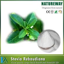 Pure Natural Stevia leaf extract powder, Stevia rebaudiana extract-80%, 90%, 95% stevioside