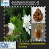 New Arrival High Standard Organic Gardenia Jasminoides Ellis Extract
